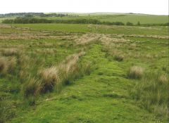 Roman road near Otterburn