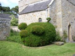 Topiary Pig at Halton