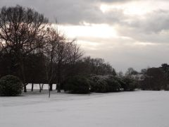Bedlington Golf Course
