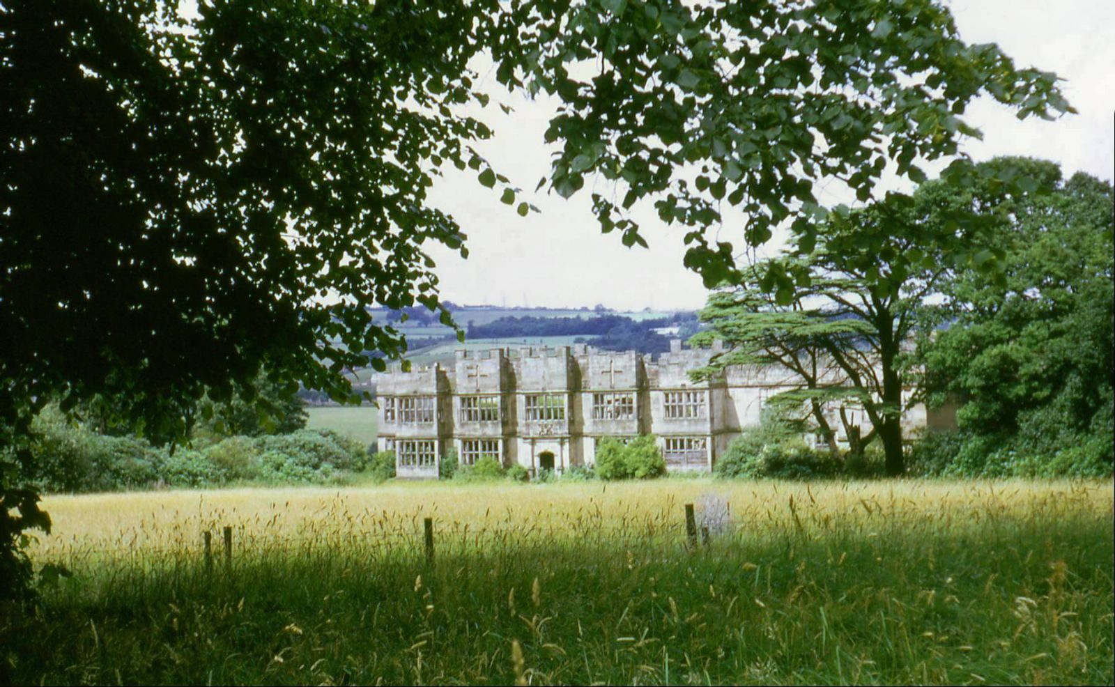Ruins of Gibside Hall, 1969