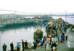 Seahouses harbour, 1965