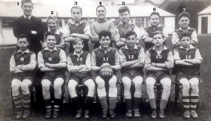 1955-56  senior squad numbered.jpg