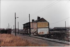 Doctor Terrace 1970's - The last 2 houses.jpg