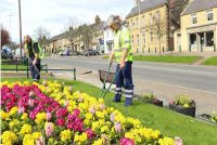 Read more about Northumberland is blooming beautiful