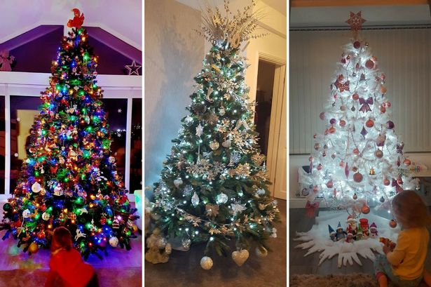 Top 20 readers' Christmas trees in Newcastle & the North East - voted for by you
