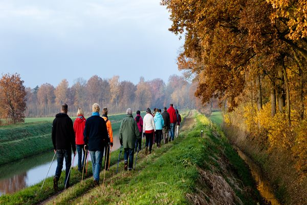 Walk your way to  health and happiness with new group walks