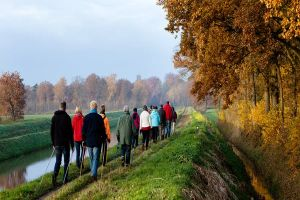 Read more about Walk your way to  health and happiness with new group walks