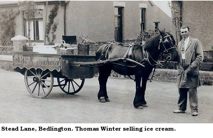 Stead Lane ice cream seller text.jpg