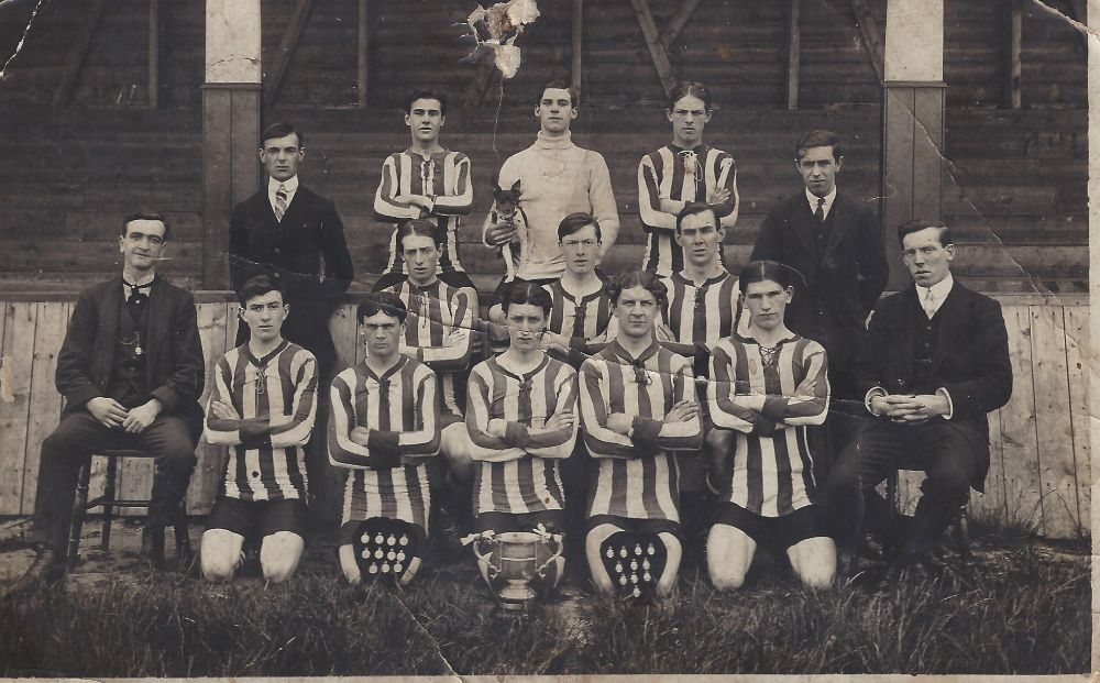Bedlington Terriers Football Team.jpg