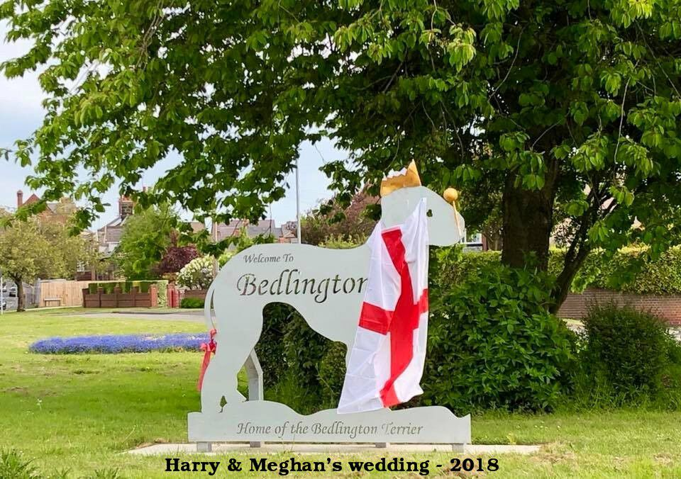 2018 Prince harry wedding 19_05_2018.jpg